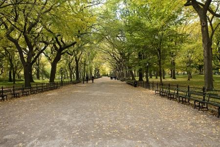 urban urban:  Center Park NY . Beautiful park in beautiful city. Stock Photo