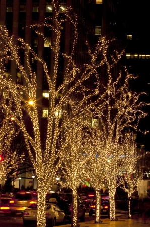 Illuminated decoration of trees at night in Manhattan at Christmas