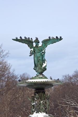 Bethesda Fountain in Winter photo