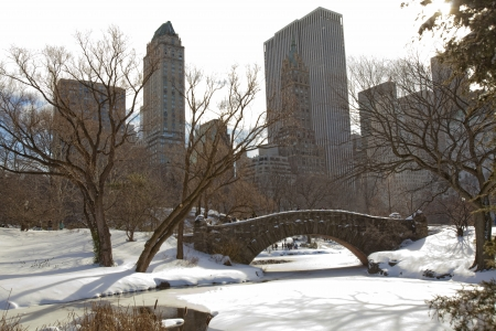 Central Park, New York. Beautiful park in beautiful city.  photo