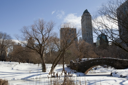 Central Park, New York. Beautiful park in beautiful city.  Stock Photo - 15581393
