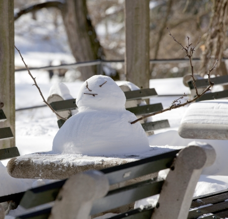 Snowman on table  photo