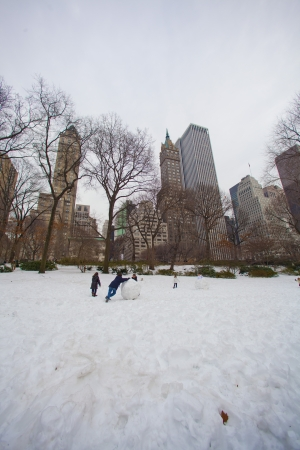 Snow in New York City photo