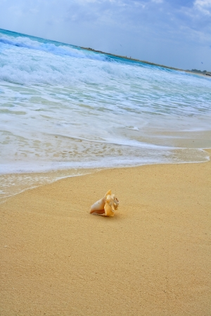 ripple: Waves on beautiful golden beach Stock Photo