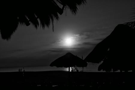 Nuit sur une plage Banque d'images - 15577403