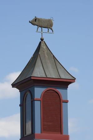 anemometer: Anemometer Tower