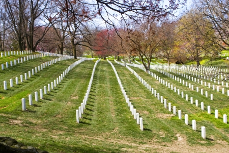 Arlington Cemetery. Washington DC photo