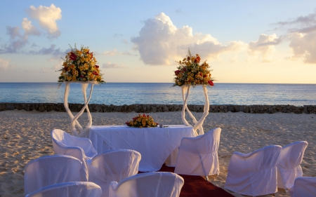 Wedding in tropic photo