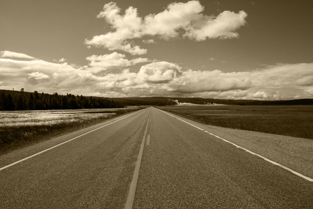 bridger: Road Along Yellowstone National Park
