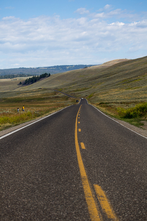 ulysses s  grant: Road Along Yellowstone National Park
