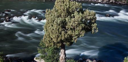 yellowstone: River. Yellowstone National Park