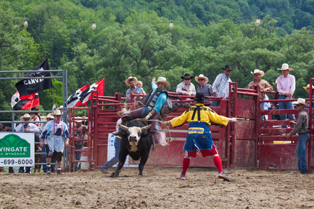 Ellicottville, New York - July 4 : Cowboy Participating Competition. Championship Rodeo, Located in the beautiful Enchanted Mountains that surround Ellicottville New York, USA on July 4 2011
