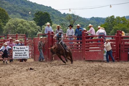 Cowboy Participating Competition. Championship Rodeo Editorial
