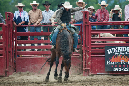 bucking bull: Ellicottville, New York - July 4 : Cowboy Participating Competition. Championship Rodeo, Located in the beautiful Enchanted Mountains that surround Ellicottville New York, USA on July 4 2011