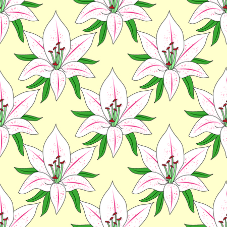 plant delicate: Vector seamless background with flower Lily. Illustration