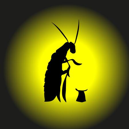 Obdachlose, hungrige, Bettlerschabe bittet um Geld, Vektorillustration. Schabe eine Käferkontur. Für Insektenbekämpfungsdienste Silhouette.