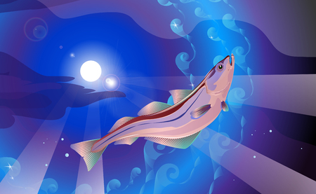 Background the lilac and blue tones. Pollock fish in sea, vector illustration of Atlantic or Alaska.