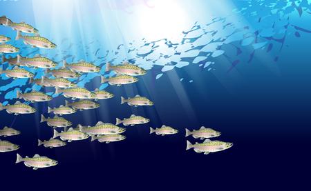 École de poisson saumon rose. La vie marine. Illustration vectorielle optimisée pour être utilisée dans la conception d'arrière-plan, la décoration.