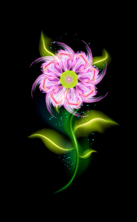 Fiore rosa colorato incandescente. Elemento floreale ornamentale moderno sopra il nero. Bellissimi ornamenti illuminati alla moda con bagliore decorativo di lusso per il tuo design in illustrazione vettoriale. eps 10 Vettoriali