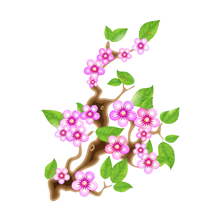 Branch sakura, vector illustration cherry blossom, with flowers in anime style. Unorthodox East Asian decoration tradition in partially animated stylistic solution. EPS 10.  イラスト・ベクター素材