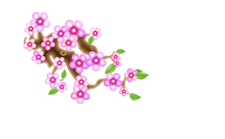 Attribute of hanami, branch sakura, vector illustration. Cherry blossom, with flowers in anime style. Unorthodox East Asian decoration tradition in partially animated stylistic solution. EPS 10. 写真素材 - 121859109
