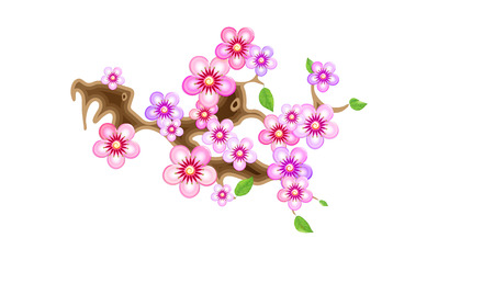 Attribute of hanami, branch sakura, vector illustration. Cherry blossom, with flowers in anime style. Unorthodox East Asian decoration tradition in partially animated stylistic solution. EPS 10.
