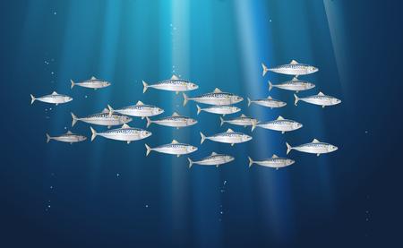 Arrière-plan, école de scomber, maquereau poissons vie marine. Bannière de poisson frais dans une nature aquatique simple. Emballage et marché de fruits de mer. Illustration vectorielle à utiliser dans la conception de la toile de fond. EPS10. Vecteurs