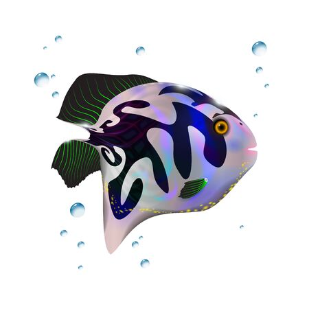 Glossy blue little 3d fish. Cartoon funny illustration of sea animal. Marine stock optimized from to be used in aqua banners design, this illustration of a happy cartoon character.