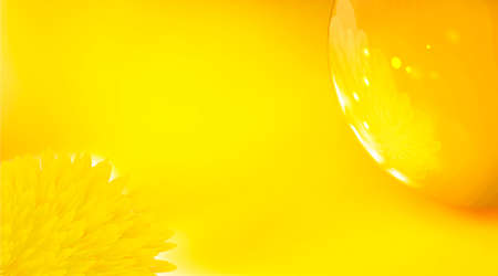 Yellow background, realistic abstract. Flower is reflected in glossy golden sphere 3d. Digital art blend technique, close up dandelion amber tones. Reflection macro design, art illustration. Reklamní fotografie