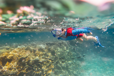 child snorkeler diving along the brain coral red sea