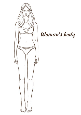 Vector illustration of woman's body. Isolated outline, line, contour. Template girl in underclothes. Paper doll