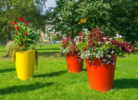 Large flowerpots adorning the city park. Urban landscapening.