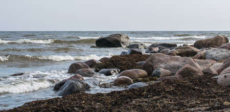 The rocky coast of the Baltic Sea in Mersrags in Latvia. Cape Mersrags.