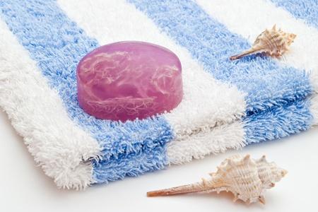 jab�n de algas en pa�o azul blanco y conchas de mar Foto de archivo - 9121126
