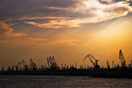 marine cranes in shipyard silhouette on evening sky photo