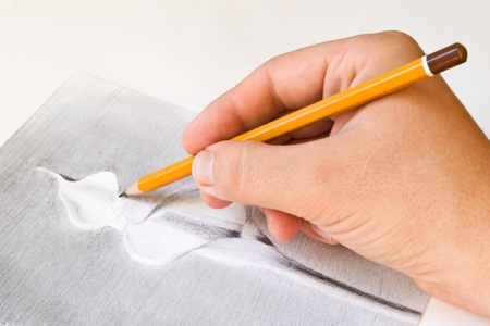 drawing a calla lily flower with pencil in hand Stock Photo - 9181712