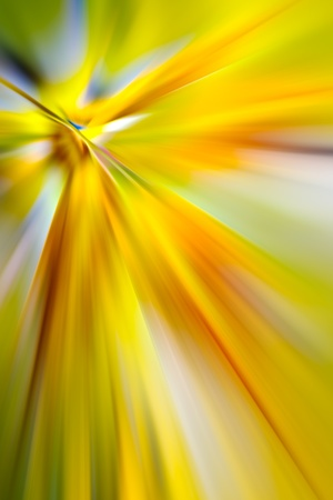 macro image: abstract colors for background