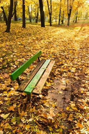 bench in park with fall leaves and sun rays Stock Photo - 12430035