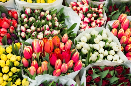 closeup of flowers market with tulips