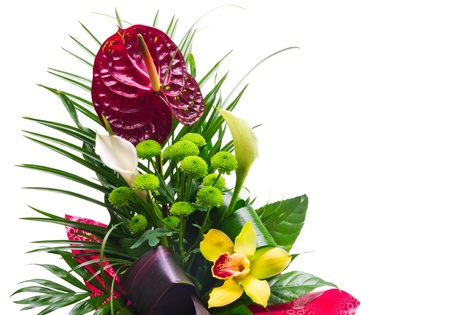 beautiful closeup of flower bouquet isolated  photo