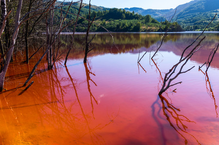water ecosystem: red lake polluted with dead trees