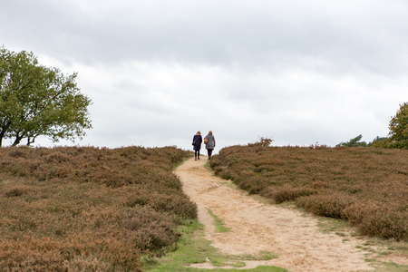2 women walk up al hill on a sandy path at the Blaricummerheide in the Netherlands.