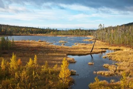 Small lake on the tundra. Autumn landscape. Lapland. Stock Photo - 16879785