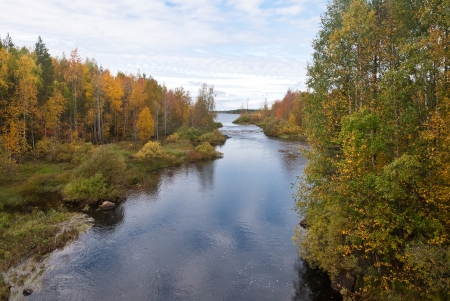 north woods: Beautiful autumn forest at the rivers coast
