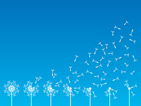 Flying dandelion seeds in the wind  Vector illustration Vector