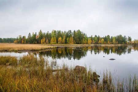 Autumn waterscape on Ladoga lake. Fall color forest on lake coast