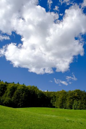 Meadow, forest and blue sky with clouds.