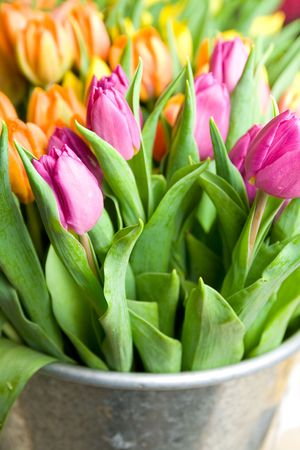Bunch of beautiful colorful tulips in bouquet at florists