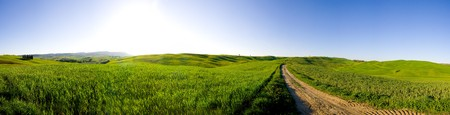Typical Tuscany landscape combined into panorama (Val d' Orcia). Stockfoto