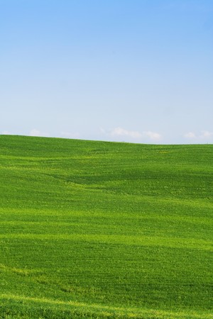 orcia: Typical Tuscany (Val d Orcia) landscape with blue sky and rolled hills. Stock Photo
